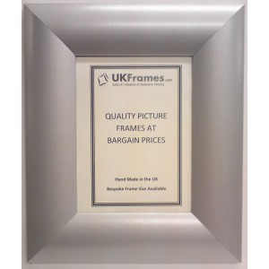 65mm Dome Silver Frames